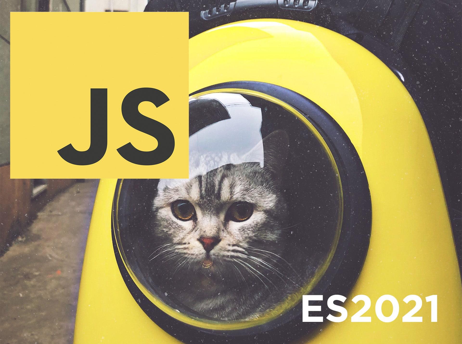My favorite features coming in Javascript ES2021